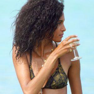 Cindy Bruna in a Bikini of the Day